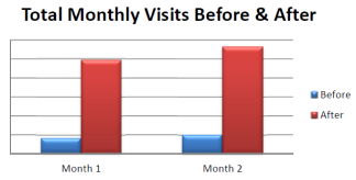Monthly Visits